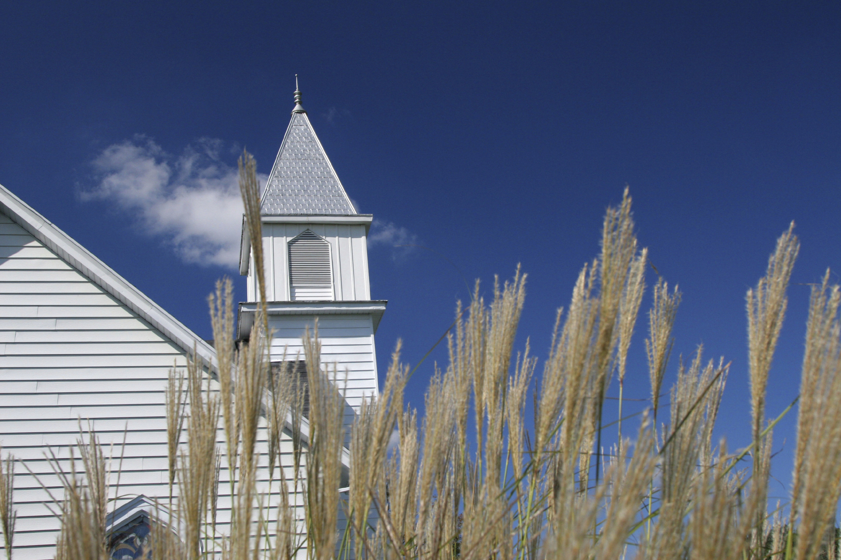 Wheat Church C